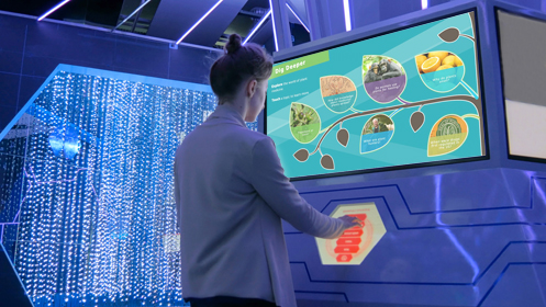 Touchscreen Interactive for small museum